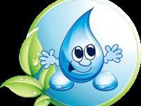 Педагогическийпроект«Юные туристы» по теме: «Волшебница вода»