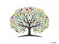 Педагогическийпроект«Юные туристы» НОД по теме: «Мое семейное дерево»